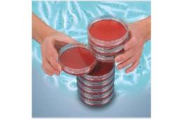 Чашки для тканевых культур